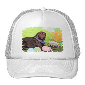 Easter - Chocolate Labrador - Hershey Trucker Hat
