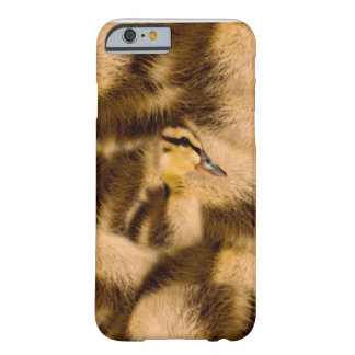 Easter Duckling Barely There iPhone 6 Case