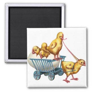 easter egg and baby chicks refrigerator magnet
