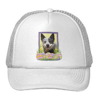 Easter Egg Cookies - Australian Cattle Dog Mesh Hats