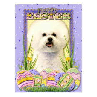 Easter Egg Cookies - Bichon Frise Postcard