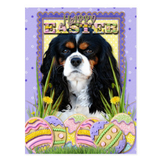 Easter Egg Cookies - Cavalier - Tri-color Postcard