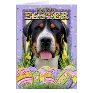 Easter Egg Cookies - Greater Swiss Mountain Dog Greeting Card