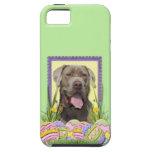 Easter Egg Cookies - Mastiff iPhone 5 Cases