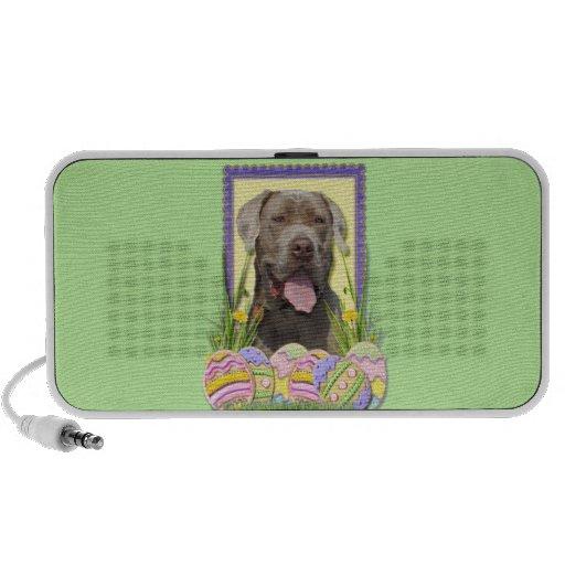 Easter Egg Cookies - Mastiff Mini Speakers