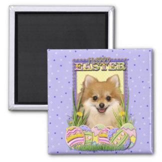 Easter Egg Cookies - Pomeranian Magnet