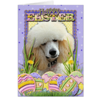 Easter Egg Cookies - Poodle - Apricot Card