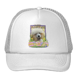 Easter Egg Cookies - Poodle - Apricot Hat
