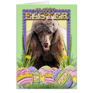 Easter Egg Cookies - Poodle - Chocolate Card