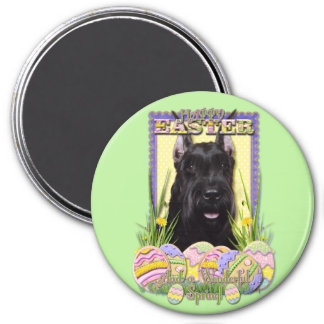 Easter Egg Cookies - Schnauzer Magnet