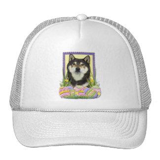 Easter Egg Cookies - Shiba Inu Mesh Hats