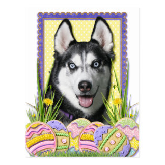 Easter Egg Cookies - Siberian Husky Postcard