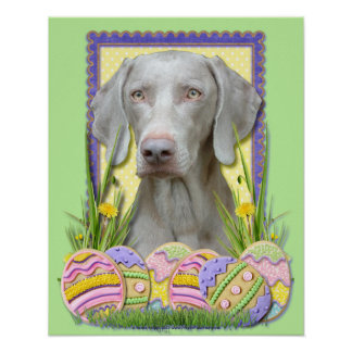 Easter Egg Cookies - Weimeraner Posters
