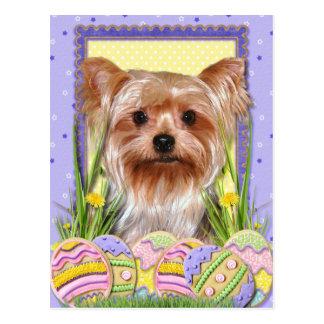Easter Egg Cookies - Yorkshire Terrier Postcard