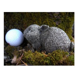 Easter Eggs, Rabbit ,White Golf Ball Post Card