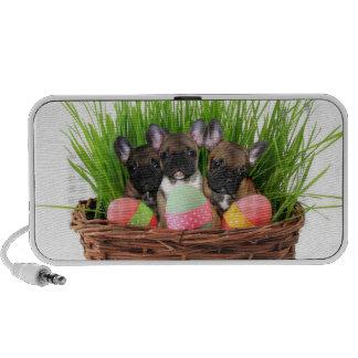 Easter French bulldogs doodle speaker