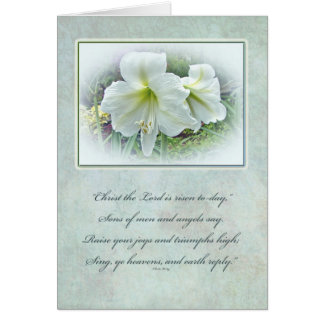 Easter Greeting Card - White Amaryllis