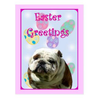 Easter Greetings Bulldog postcard
