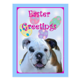 Easter greetings bulldog post card