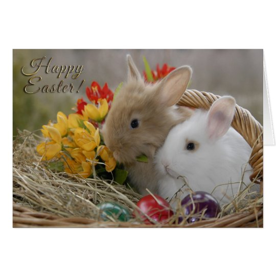 """Easter - """"Happy Easter"""" Baby Bunnies Card"""