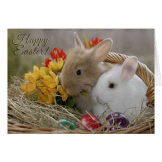 "Easter - ""Happy Easter"" Baby Bunnies Greeting Card"