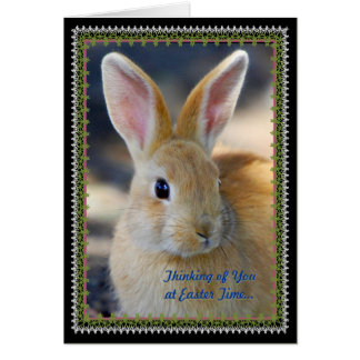 Easter Holiday Greeting Greeting Card