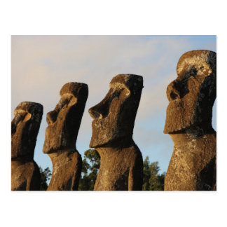 Easter Island Head Statues Postcard