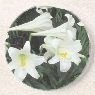 Easter Lily (Lilium regale) Drink Coasters