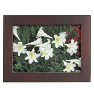 Easter Lily (Lilium regale) Keepsake Boxes