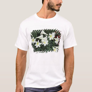 Easter Lily (Lilium regale) T-Shirt