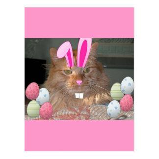 Easter Orange Tabby Kitty Cat Postcard