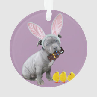 Easter Pitbull puppy dog