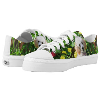 Easter poodle  dog low top tennis shoes