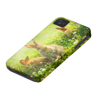 Easter Rabbits Case-Mate iPhone 4 Case