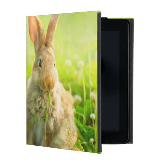 Easter Rabbits Cases For iPad