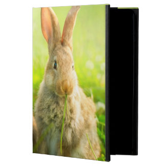 Easter Rabbits Cover For iPad Air