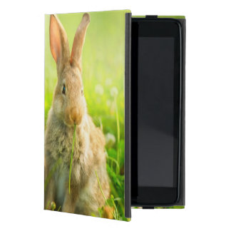 Easter Rabbits Cover For iPad Mini
