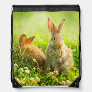 Easter Rabbits Drawstring Bag