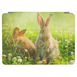 Easter Rabbits iPad Air Cover