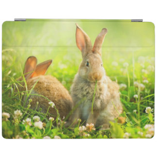Easter Rabbits iPad Cover