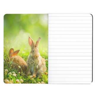 Easter Rabbits Journals