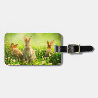 Easter Rabbits Luggage Tag