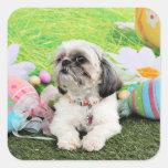Easter - Shih Tzu - Sophie