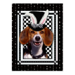 Easter - Some Bunny Loves You - Beagle