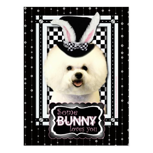 Easter - Some Bunny Loves You - Bichon Frise Post Cards
