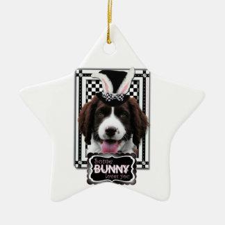 Easter - Some Bunny Loves You - Springer Spaniel Ornaments