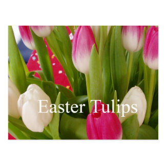 Easter tulips postcard