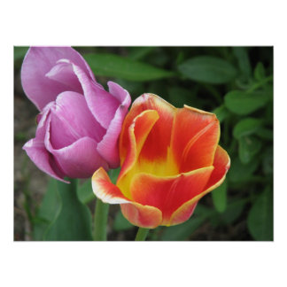 Easter Tulips Print