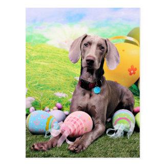 Easter - Weimaraner - Ben Postcard