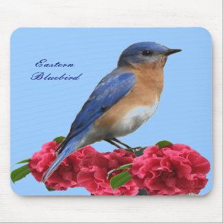 Eastern Bluebird Camellia Mousepad